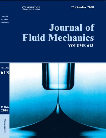 Liquid interfaces in viscous straining flows ... - Itai Cohen Group