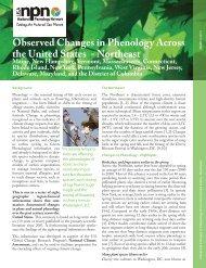 Northeast Region.indd - USA National Phenology Network