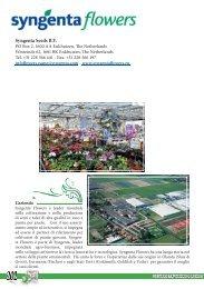 Syngenta Seeds B.V. - Clamer Informa