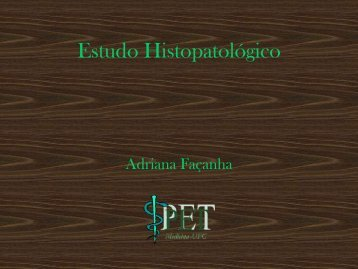 Estudo Histopatolgico