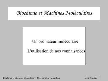 Biochimie et Machines Moléculaires - LISM
