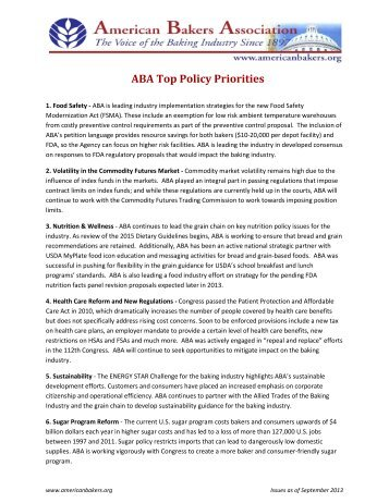 Printable Top Issues List - Rise to Action
