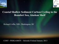 Coastal Shallow Sediment Carbon Cycling in the ... - cost pergamon