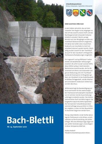 Die Trachtbach-Verbauung nimmt Formen  an
