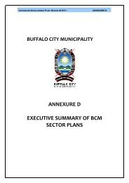 annexure d executive summary of bcm sector plans - Buffalo City