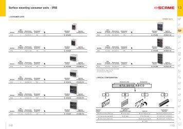 Surface mounting consumer units - IP66 1.3 - Scame Parre S.p.A.