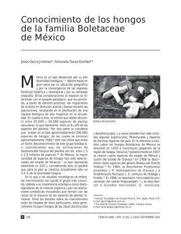 Download (88Kb) - Repositorio Institucional UANL - Universidad ...