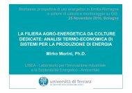 LA FILIERA AGRO-ENERGETICA DA COLTURE DEDICATE - Energia