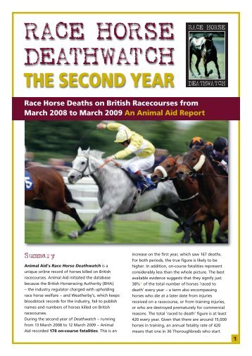 download report (pdf) - Race Horse Death Watch