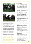 download report (pdf) - Race Horse Death Watch - Page 2