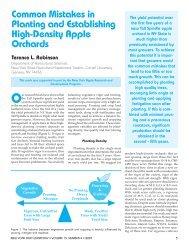 Planting and Establishing High Density Apple Orchards