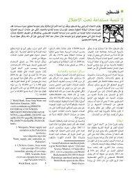 فلسطين - Social Watch