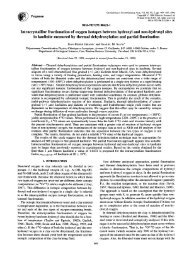 Intracrystalline fractionation of oxygen isotopes between hydroxyl ...