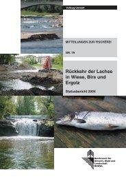 Rückkehr der Lachse in Wiese, Birs und Ergolz - BAFU - admin.ch