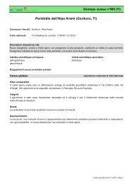 Peridotite dell'Alpe Arami (Gorduno, TI) - admin.ch