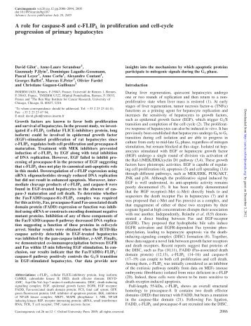 A role for caspase-8 and c-FLIPL in proliferation ... - Carcinogenesis