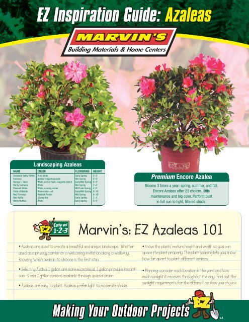 Azaleas - Marvin's