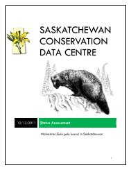 Status Assessment - Saskatchewan Conservation Data Centre