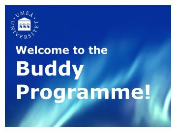 What is the Buddy Programme?