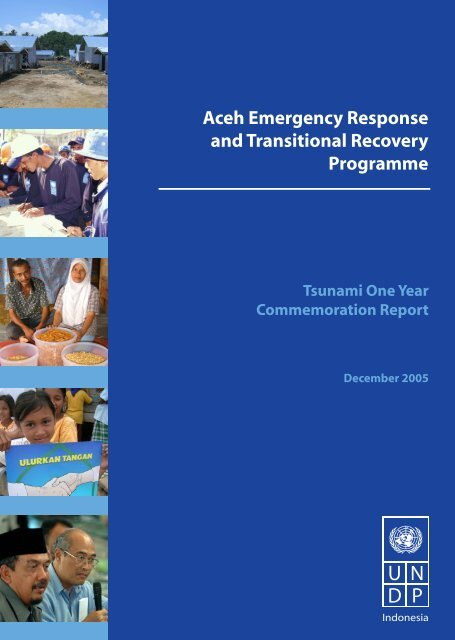 Aceh Emergency Response and Transitional Recovery ... - UNDP