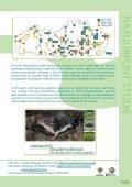 waterspitsmuizen in jaarverslag studie 2008-2009 - Natuurpunt - Page 4