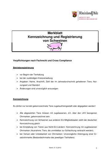 Merkblatt Schweine 2013
