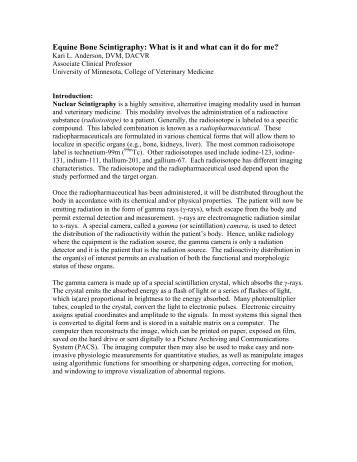 Equine Bone Scintigraphy - University of Minnesota