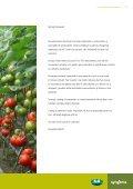 Catalog Syngenta seminte ardei, tomate, cornison - ecoplant.ro - Page 3
