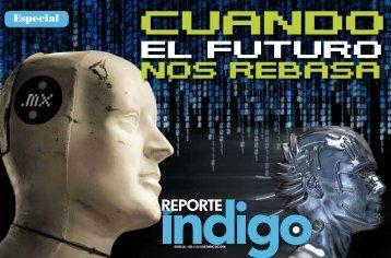 Especial - Reporte Indigo
