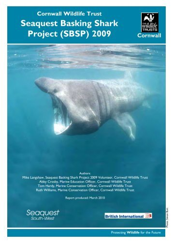 Seaquest Basking Shark Project (SBSP) 2009 - Cornwall Wildlife Trust