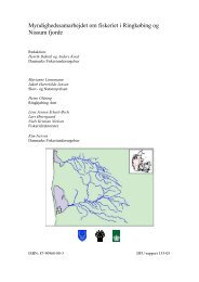 Myndighedssamarbejdet om fiskeriet i Ringkøbing og ... - DTU Aqua