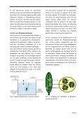 nieuwsbrief technologische dienstverlening water duurzaam ... - PCS - Page 4