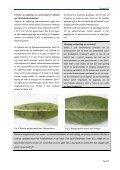 nieuwsbrief technologische dienstverlening water duurzaam ... - PCS - Page 5
