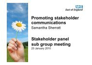 Promoting stakeholder communications - NHS Strategic Projects Team