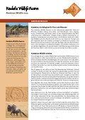 Abenteuer Wildlife 2013 - Kambaku Safari Lodge in Namibia - Seite 2