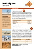 Teamsafaris 2013 - Kambaku Safari Lodge in Namibia - Seite 3