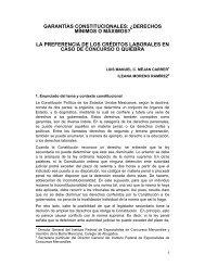 garantías constitucionales: ¿derechos mínimos o máximos?
