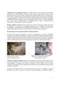 estudio validacion ecofogon justa - BioEnergy Discussion Lists - Page 7