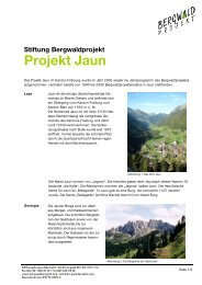 Stiftung Bergwaldprojekt Projekt Jaun