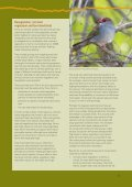 Is revegetation good for biodiversity? - Land and Water Australia - Page 7