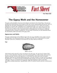 The Gypsy Moth and the Homeowner - State of New Jersey