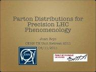 Parton Distributions for Precision LHC Phenomenology - Infn