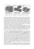 Nano-composites à charges lamellaires et matrice polymère - Page 2