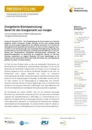 Energetische Biomassenutzung: Bereit für den Energiemarkt von ...