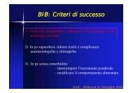 BIB: Criteri di successo