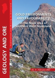 GOLD ENVIRONMENTS AND FAVOURABILITY