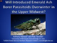 Cold-tolerance of Emerald Ash Borer Parasitoids