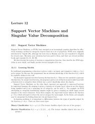 Support Vector Machines and Singular Value Decomposition