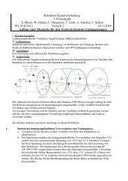 pdf-Datensatz