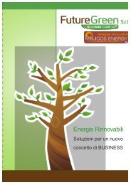 Energie Rinnovabili Paulownia - Infobuildenergia.it